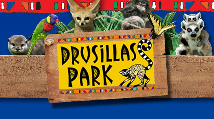 Eastbourne Air Show >> Drusillas Park | Whats' On, Attractions, Within 10 miles | Fairfields Farm